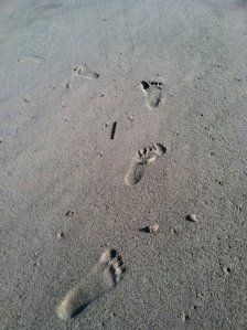 The Joy of Footsteps in the Sand