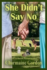 Say No CVR ARe
