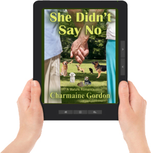 Say No ereader graphic with hands